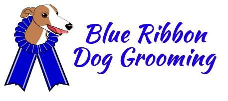 blue ribbon dog grooming